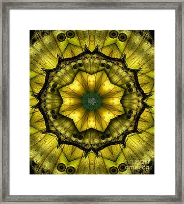 Yellow Butterfly Wing Kaleidoscope Mandala Framed Print by Janeen Wassink Searles