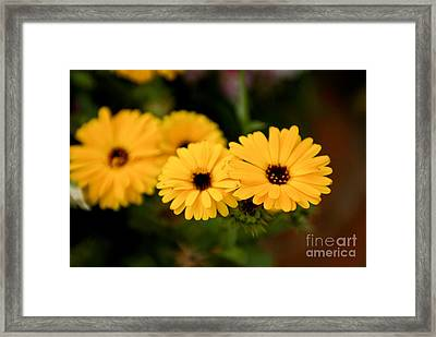 Yellow Chain Framed Print