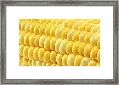 Yellow Corn Macro Framed Print