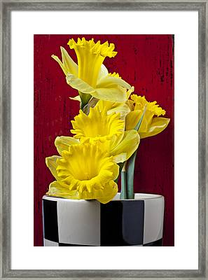 Yellow Daffodils In Checkered Vase Framed Print by Garry Gay