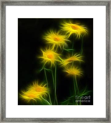 Yellow Daisy Floral  Framed Print by Marjorie Imbeau