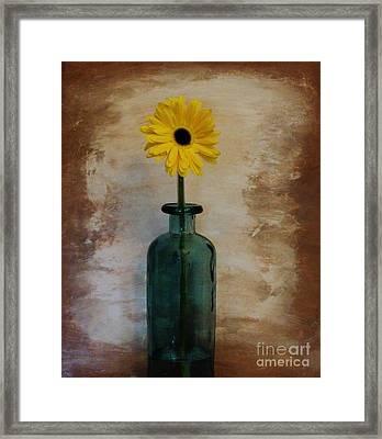Yellow Daisy In A Bottle Framed Print by Marsha Heiken