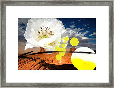 Yellow Eye Framed Print