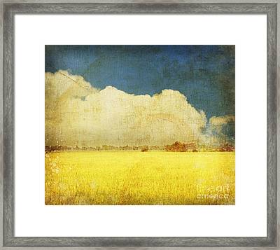 Yellow Field Framed Print by Setsiri Silapasuwanchai