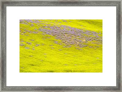 Yellow Fields Framed Print by Guido Montanes Castillo