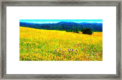 Yellow Hills . Long Cut Framed Print by Wingsdomain Art and Photography