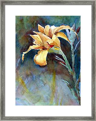 Yellow Iris Framed Print by Alan Smith
