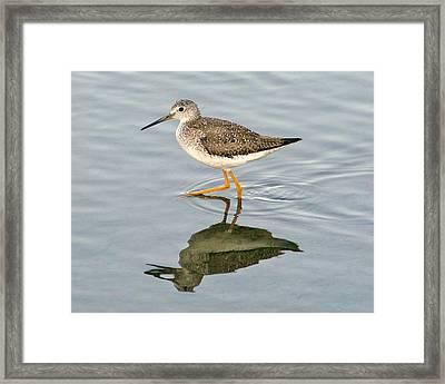 Yellow Leg Reflection Framed Print by Paulette Thomas