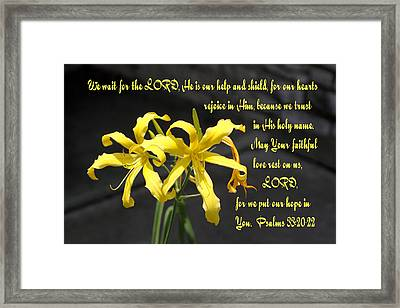Yellow Lilies Ps. 33v20-22 Framed Print by Linda Phelps