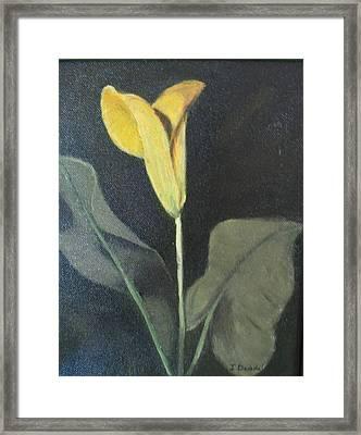 Yellow Lily Framed Print by Iris Nazario Dziadul