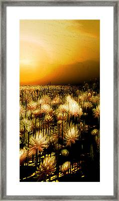 Yellow Framed Print by Monroe Snook