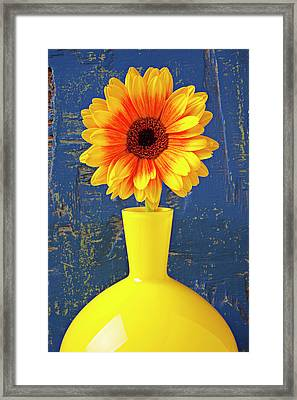 Yellow Mum In Yellow Vase Framed Print by Garry Gay