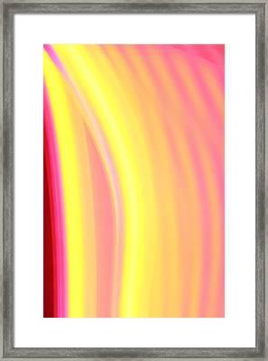 Yellow Neon Framed Print by Will Czarnik