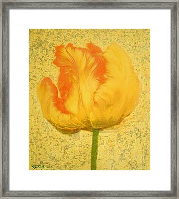 Yellow Parrot Tulip Framed Print by Richard James Digance
