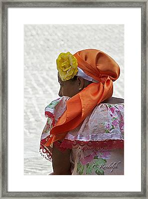 Yellow Rose Of Cuba Framed Print by Cheri Randolph