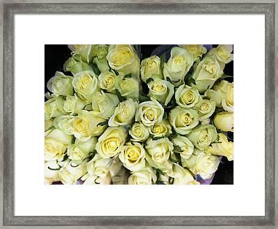 Yellow Roses Framed Print by Anna Villarreal Garbis