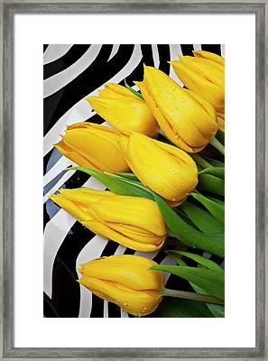 Yellow Tulips On Striped Plate Framed Print by Garry Gay
