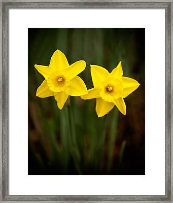 Yellow Twins Framed Print