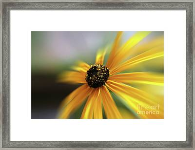 Yellow Umbrella Framed Print by Bruno Santoro