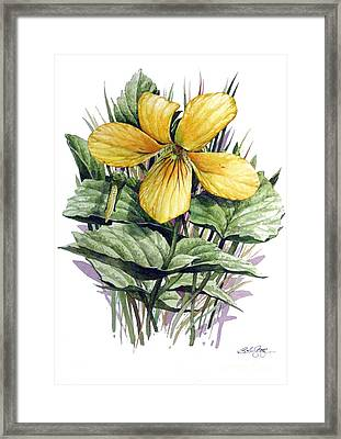 Framed Print featuring the painting Yellow Violet by Bob  George