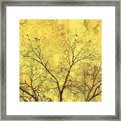 Yellow Wall Framed Print by Skip Nall