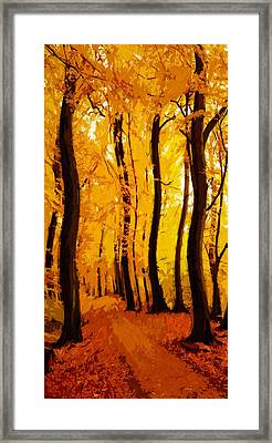 Yellow Wood Framed Print by Steve K