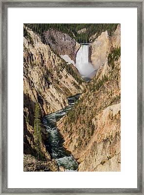 Yellowstone Falls From Artists Point Framed Print by Greg Nyquist