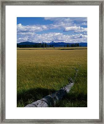 Framed Print featuring the photograph Yellowstone Log by J L Woody Wooden