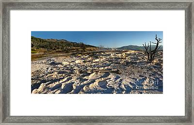 Yellowstone National Park - Minerva Terrace - 07 Framed Print by Gregory Dyer