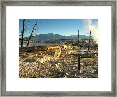 Yellowstone National Park - Minerva Terrace - 10 Framed Print by Gregory Dyer