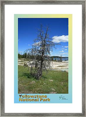 Yellowstone Np 003 Framed Print by Charles Fox