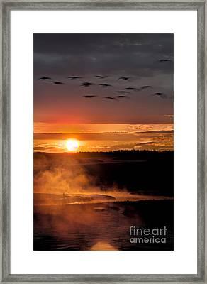 Yellowstone Sunrise Framed Print by Eli Horowitz