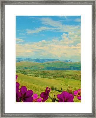 Yellowstone Valley Framed Print by Virginia Lei Jimenez