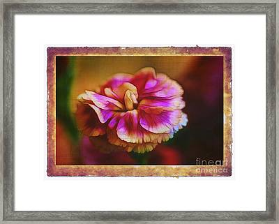 Yesterday Framed Print by Judi Bagwell