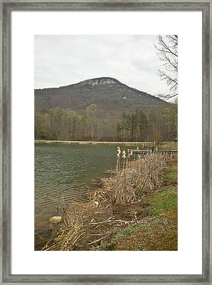 Yonah Mountain 15 Framed Print