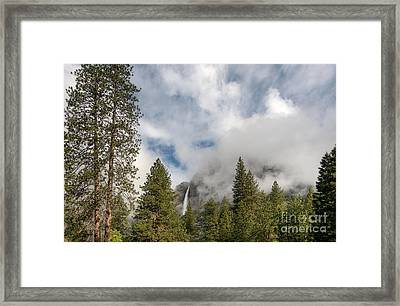 Yosemite Falls Framed Print by Sharon Seaward