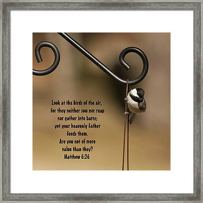 You Are More Valuable To God Framed Print by Kathy Clark