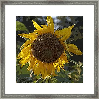 Framed Print featuring the photograph You Are My Sunshine by Cheri Randolph