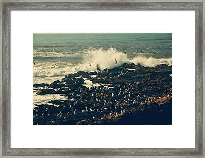 You Came Crashing Into My Heart Framed Print