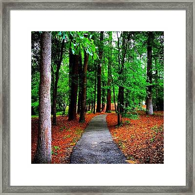 You Lead I'll Follow Framed Print