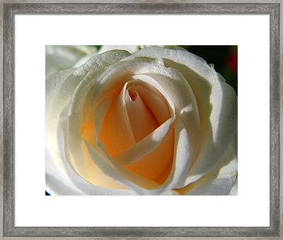 You Light Up My Life Framed Print