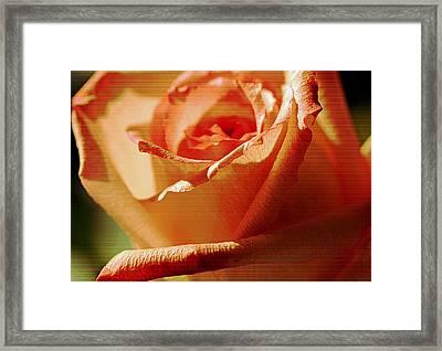You Make Me Smile..... Framed Print by Tanya Tanski
