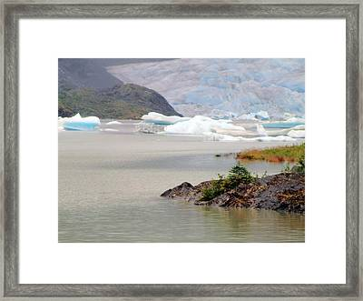 You Won't Believe Mendenhall Glacier Framed Print by Mindy Newman