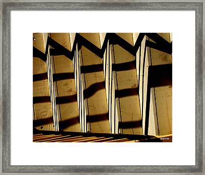 You Zig I Zag Framed Print