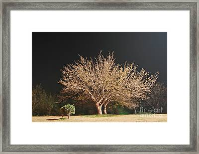 Young And Old - Winter Framed Print