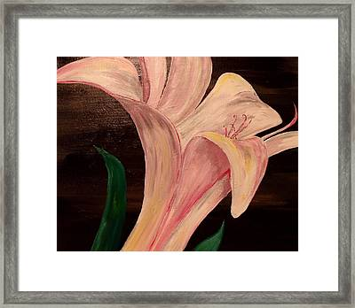 Young Blossom Framed Print by Mark Moore