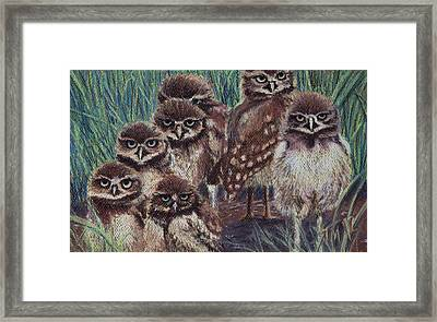 Young Burrowers Framed Print by Thomas Maynard