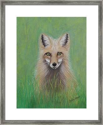 Young Fox Framed Print by David Hawkes