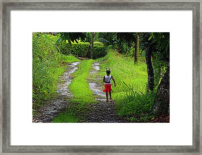 Framed Print featuring the photograph Young Girl- St Lucia by Chester Williams