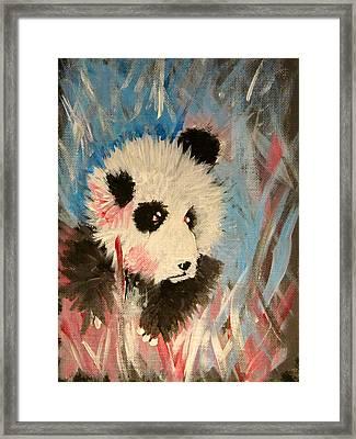 Young Panda Framed Print by Hannah Stedman